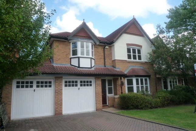 Thumbnail Detached house to rent in Oakleigh Road, Cheadle Hulme, Cheadle