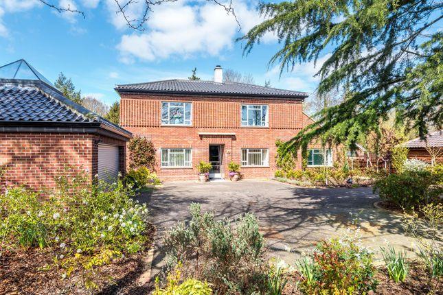 Thumbnail Detached house for sale in Mill Road, Hempnall, Norfolk