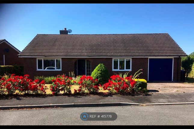 Thumbnail Bungalow to rent in Ffridd Y Gog, Corwen