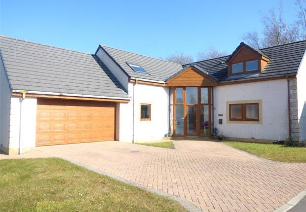 Thumbnail Detached house for sale in Beech View, Gilgarran, Workington, Cumbria