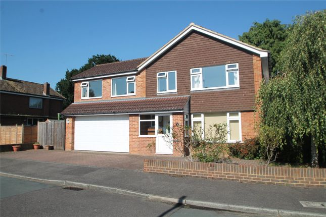 Thumbnail Detached house to rent in Loampits Close, Tonbridge