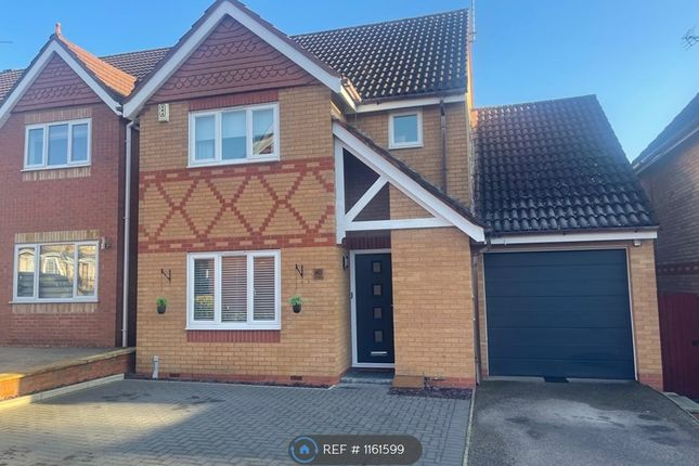 Thumbnail Detached house to rent in Chandlers, Peterborough