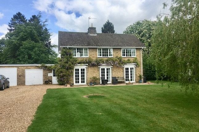 Thumbnail Property to rent in Hall Close, Harrold, Bedford