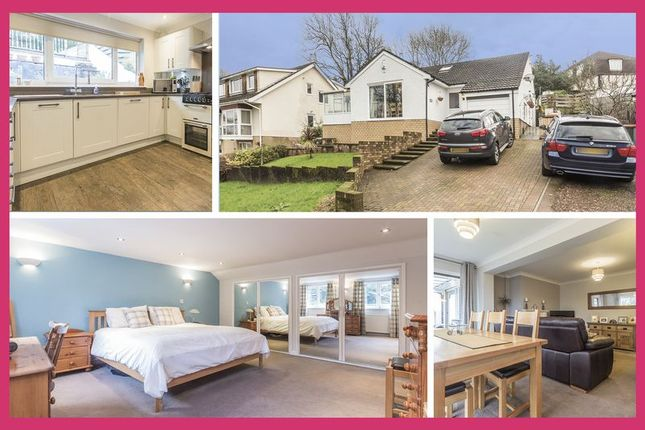 Thumbnail Detached house for sale in Eveswell Park Road, Newport