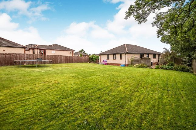 Thumbnail Bungalow for sale in Dean Acres, Comrie, Dunfermline, Fife