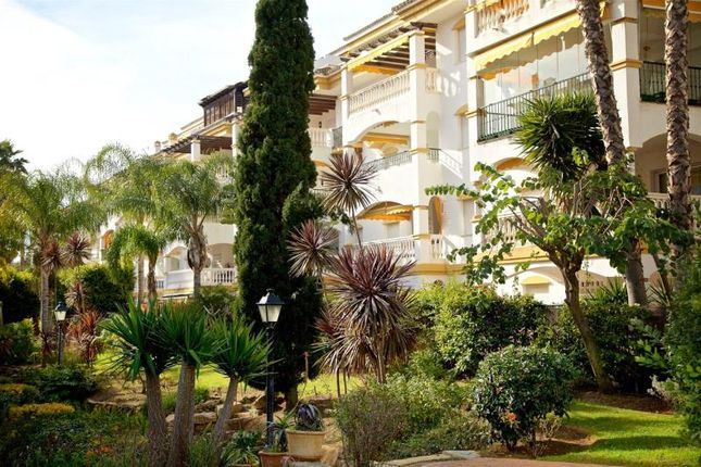 Picture No. 09 of Nueva Andalucia, Marbella, Malaga, Spain