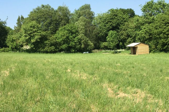 Baybridge Lane, Whiteflood Meadow Off Belmore Lane SO21