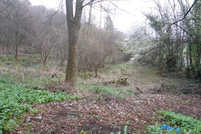 Thumbnail Land for sale in Plot Of Ground, Blairlogie, Stirling