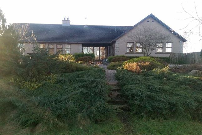 Thumbnail Property for sale in Meikle Wartle, Inverurie