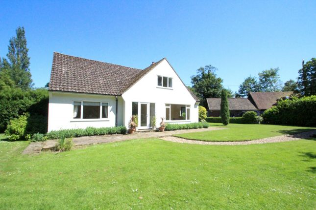 Thumbnail Detached house to rent in Woodbridge Road, Debach, Woodbridge