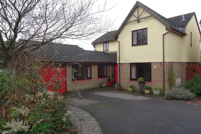 Thumbnail Detached house for sale in The Firs, Newton, Porthcawl