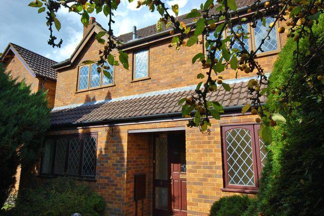 Thumbnail Property to rent in Clifton Gardens, Ferndown