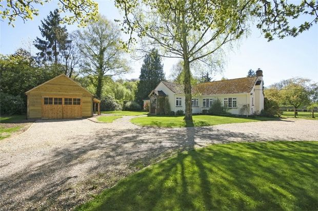 Thumbnail Detached bungalow for sale in Rockford, Ringwood, Hampshire