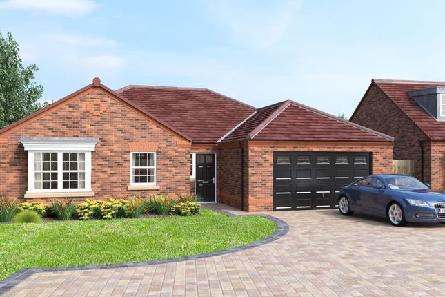 Thumbnail Detached bungalow for sale in The Westminster, Folly Nook Lane, Ranskill, Retford, Nottinghamshire