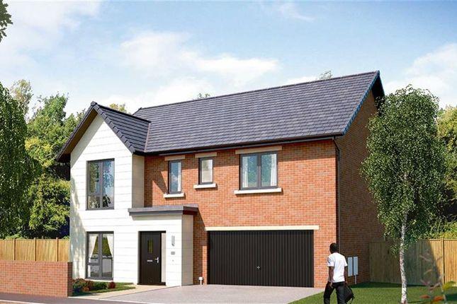 Thumbnail Detached house for sale in Cotham, Plot 32, Sheafdale Grange, Millhouses