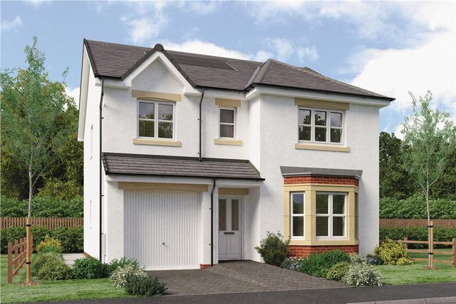 "Thumbnail Detached house for sale in ""Hughes"" at Red Deer Road, Cambuslang, Glasgow"