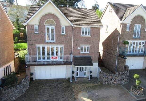 Thumbnail Detached house for sale in Sandford View, Jetty Marsh, Newton Abbot, Devon.