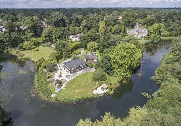 Thumbnail Detached house for sale in Avon Castle, Ringwood, Dorset