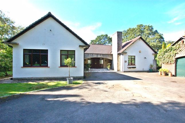 Thumbnail Detached house for sale in South Drive, Woolsington, Newcastle Upon Tyne
