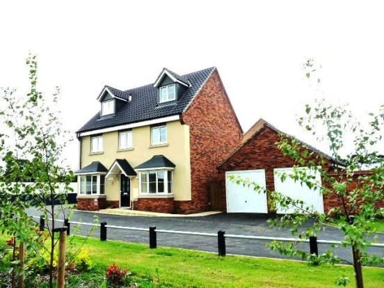 Thumbnail Detached house to rent in Berberis Drive, Red Lodge