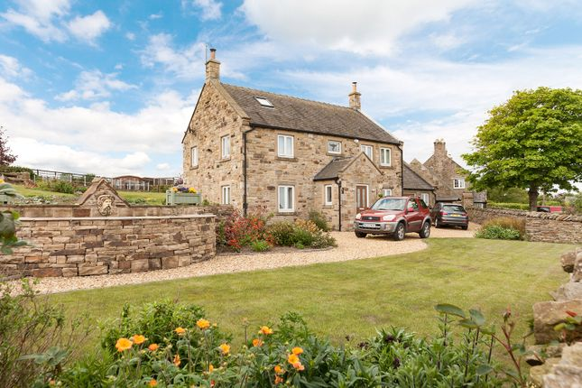 Thumbnail Detached house for sale in Phoenix House, Hedley On The Hill, Stocksfield, Northumberland