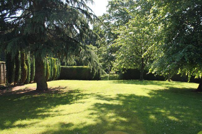 Gardens of Cedar Tree Close, Stourport-On-Severn DY13