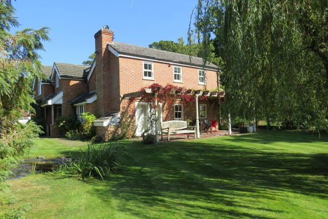 Thumbnail Detached house for sale in Brockishill Road, Bartley, Southampton