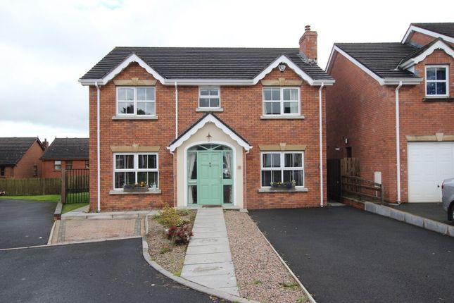 Thumbnail Detached house for sale in Anna's Grove, Newtownabbey
