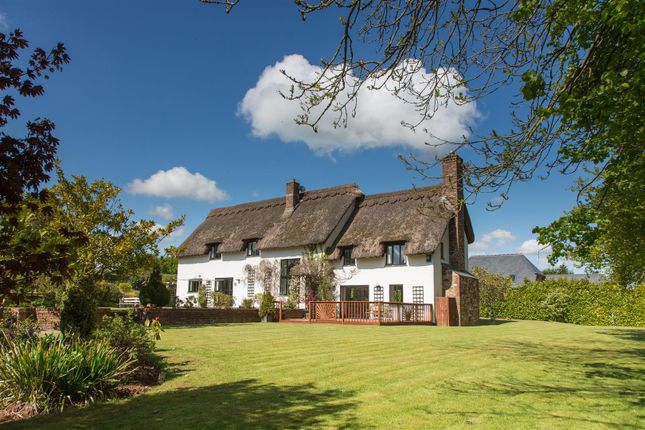 Thumbnail Property for sale in Kenn, Exeter