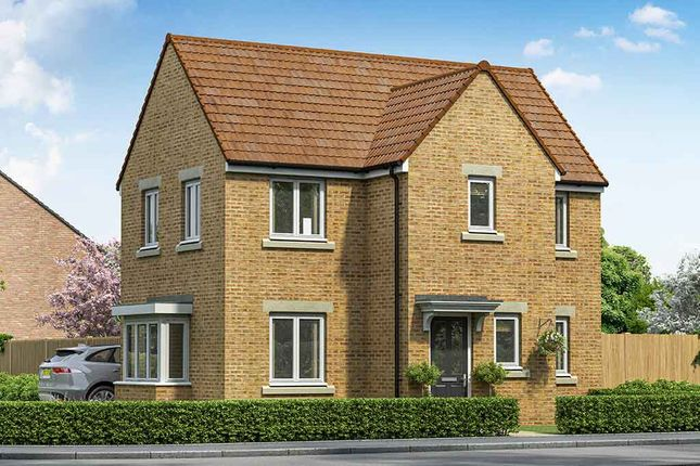 "Thumbnail Property for sale in ""The Windsor"" at Cheviot Place, Newton Aycliffe"