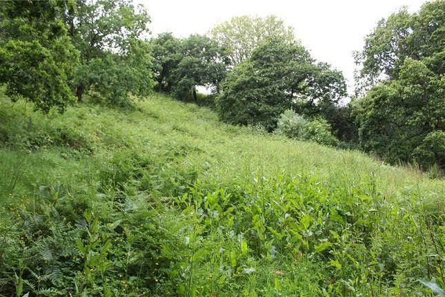 Garden of Ryall Road, Ryall, Bridport, Dorset DT6