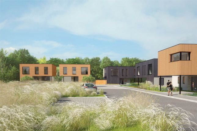 Thumbnail Detached house for sale in Plot 67 Cubis Bruton, Cuckoo Hill, Bruton, Somerset