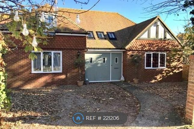 Thumbnail Detached house to rent in Derwent Road, Eastbourne