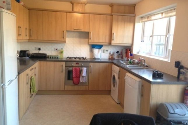 Thumbnail Shared accommodation to rent in Gadwall Croft, Keele, Newcastle Under Lyme