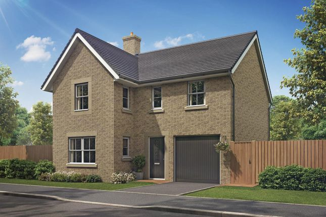 "Thumbnail Detached house for sale in ""Halton"" at Burlow Road, Harpur Hill, Buxton"