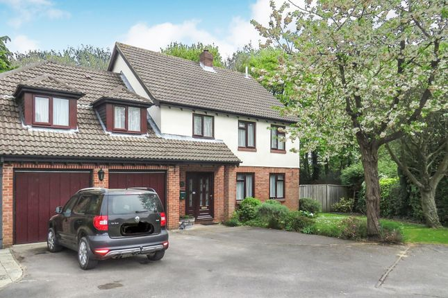 Thumbnail Detached house for sale in Monks Wood Close, Southampton