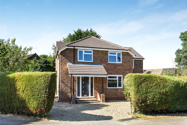Thumbnail Detached house to rent in King Edwards Road, Ascot, Berkshire