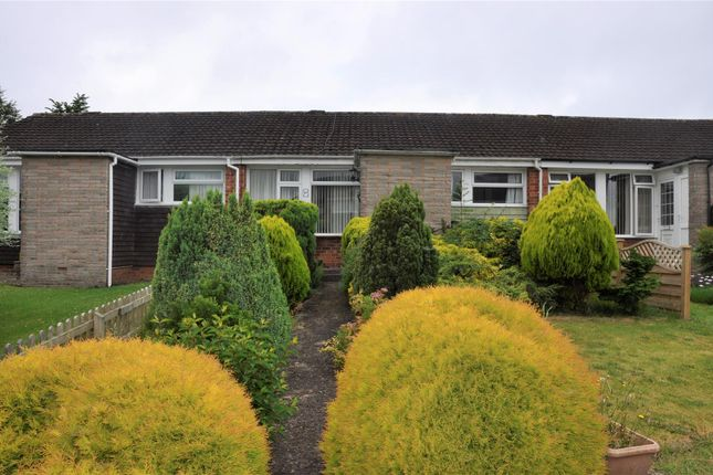 Thumbnail Detached bungalow to rent in Millers Way, Honiton