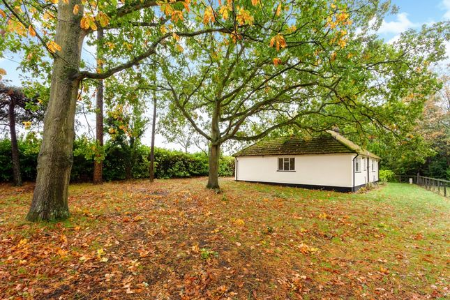 Thumbnail Bungalow to rent in Coxs Lane, Upper Bucklebury, Reading