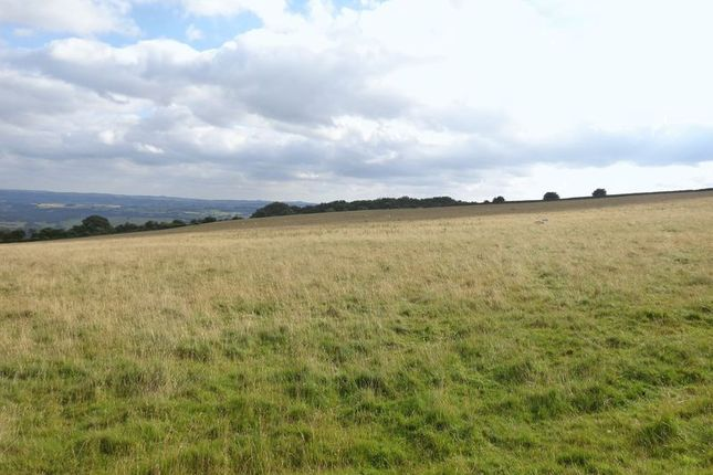 Photo 3 of Land At Longstone Edge, Great Longstone, Bakewell DE45