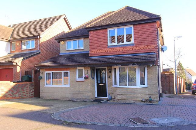 Thumbnail Detached house for sale in Peppercorn Close, Colchester, Essex