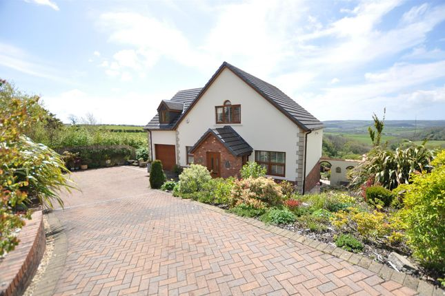 Thumbnail Property for sale in The Beeches, Trem Y Cwm, St. Clears, Carmarthen