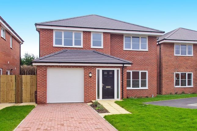 Thumbnail Detached house for sale in North Bersted Street, Bognor Regis