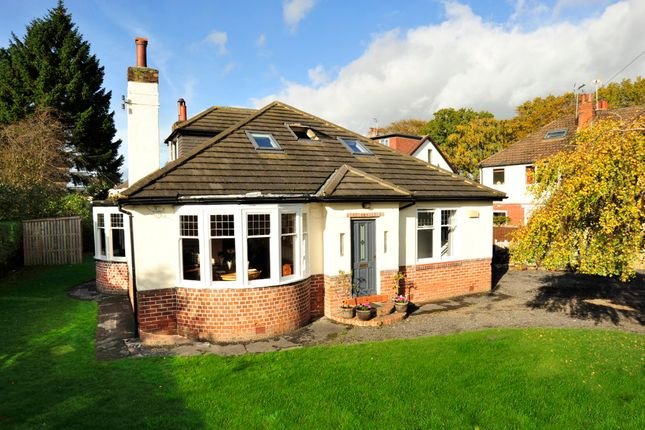 Thumbnail Detached bungalow for sale in St. Catherines Road, Harrogate