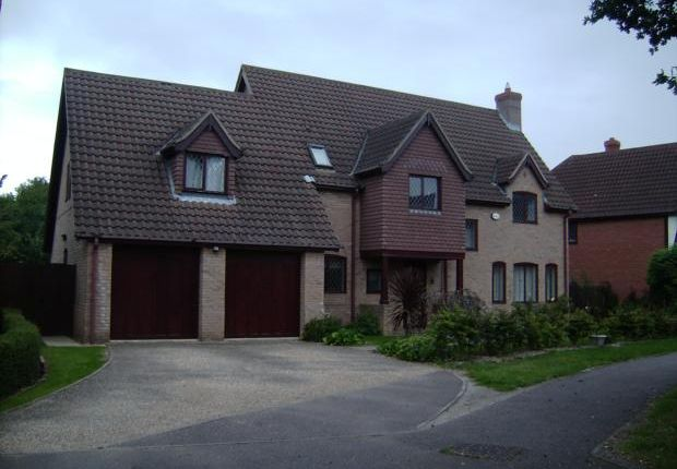 Thumbnail Detached house to rent in Lavenham Drive, Biddenham