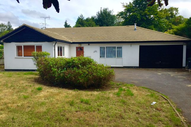 Thumbnail Bungalow to rent in Foxley Lane, Purley