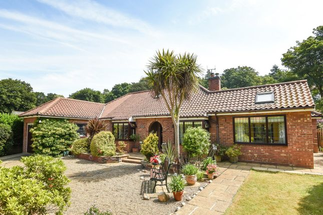 Thumbnail Detached bungalow for sale in Church Cottages, Cromer Road, West Runton, Cromer