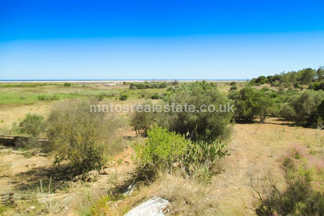 Farm for sale in C-0037 - Amazing Farm With Big Potential Near Santa Luzia Beach, Amazing Farm With Big Potential Near Santa Luzia Beach, Portugal