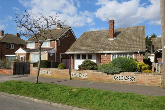 Thumbnail Detached bungalow for sale in Irving Road, Norwich