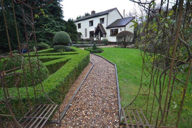 Thumbnail Detached house for sale in Tatlers Lane, Stevenage, Herts